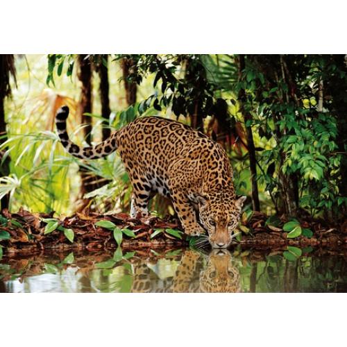 """Puzzle 2000 Peças """"Leopard"""""""