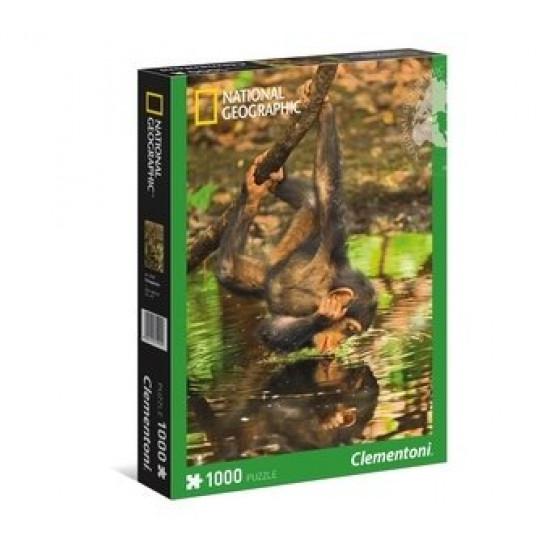 """Puzzle 1000 peças """"Chimpanzee"""""""